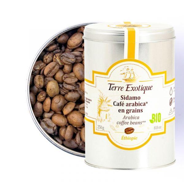 Sidamo, café Arabica en grains