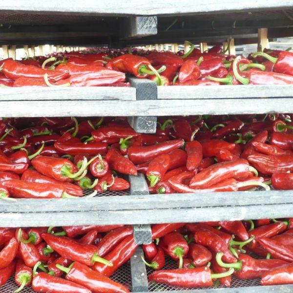 Espelette Chilli pepper PDO