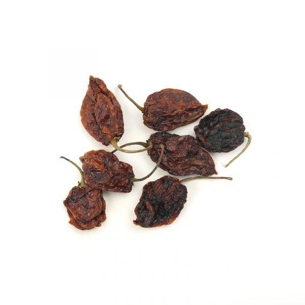 Habanero Chilli pepper