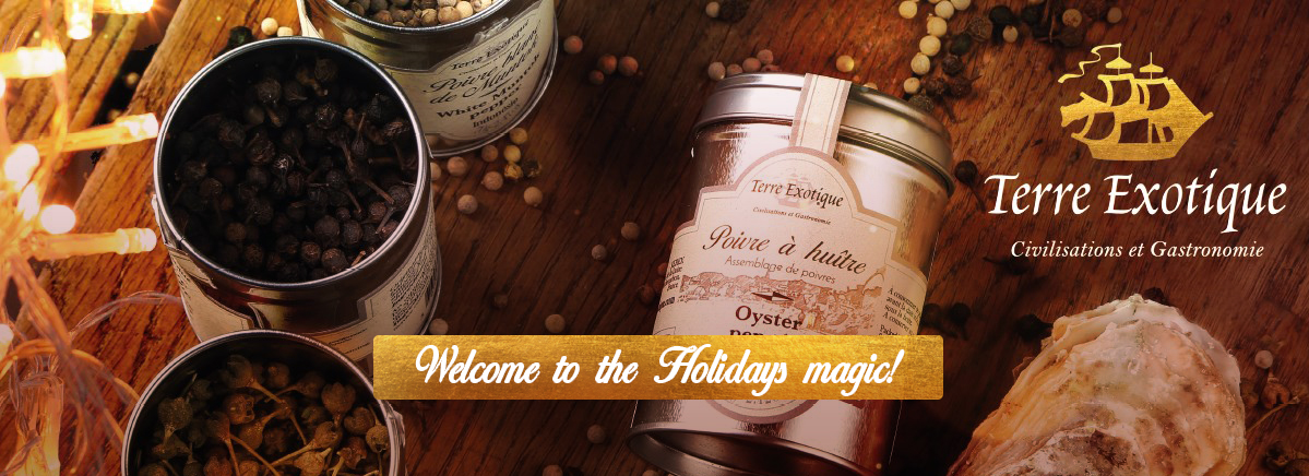 Welcome to the Holidays magic! - Terre Exotique